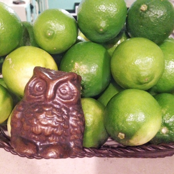 Limes with Owl